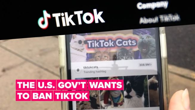 Here's why the US government wants to ban TikTok