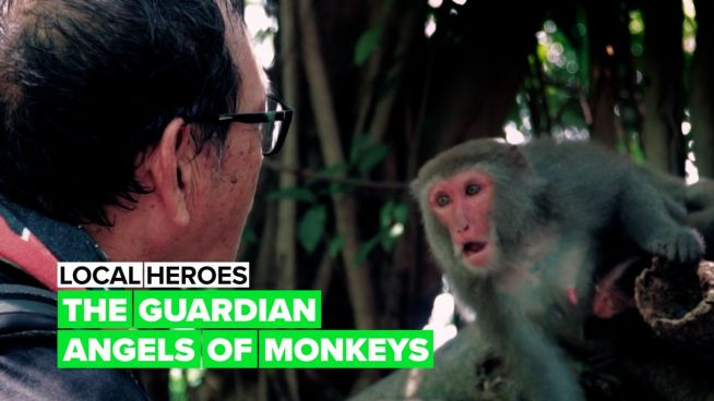 Local heroes: The monkey protector