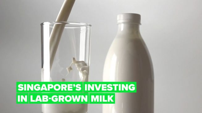 Singapore's making sure it never runs out of milk or shrimp!