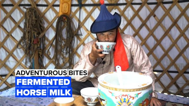 Adventurous Bites: Let loose with a cup of fermented horse milk