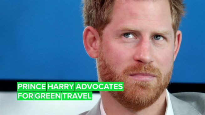 All you need to know about Prince Harry's green travel initiative