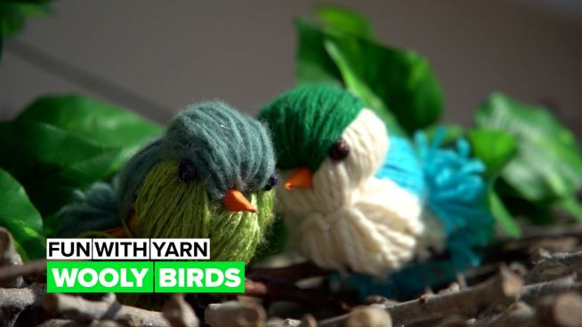 Play with yarn: Wooly bird