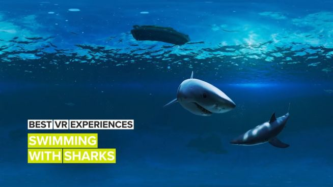 Best VR Experiences: Into the shark tank