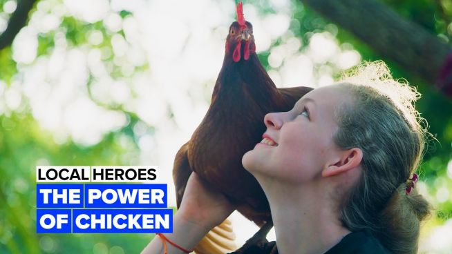 Local heroes: The power of chicken