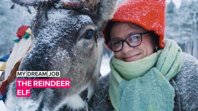 My Dream Job: Meet the elf who takes care of Santa's reindeer